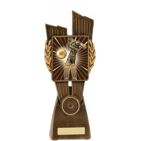 Cricket Trophy LR016C - Trophy Land