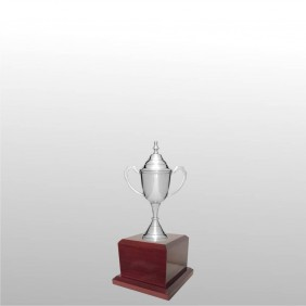 Classic Silver Cups MT100-20 - Trophy Land