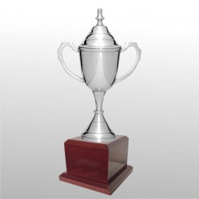 Classic Silver Cups MT100-41 - Trophy Land
