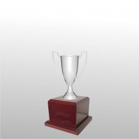 Classic Silver Cups MT102-14 - Trophy Land
