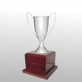 Classic Silver Cups MT102-20 - Trophy Land
