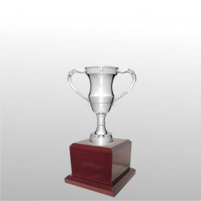 Classic Silver Cups MT109-22 - Trophy Land