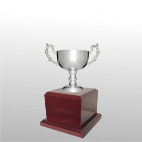 Classic Silver Cups MT122-14 - Trophy Land