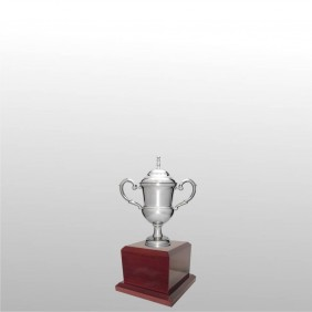 Classic Silver Cups MT204-20 - Trophy Land