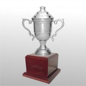 Classic Silver Cups MT205-24 - Trophy Land