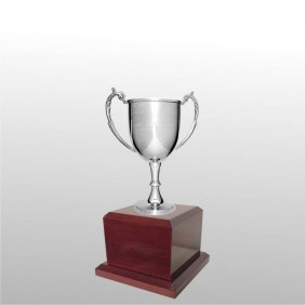 Classic Silver Cups MT211-22 - Trophy Land