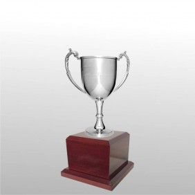Classic Silver Cups MT211-24 - Trophy Land