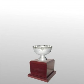Classic Silver Cups MT300-11 - Trophy Land