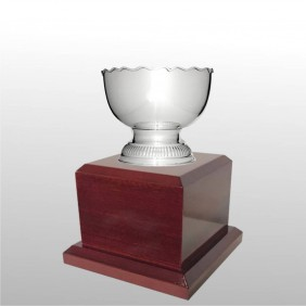 Classic Silver Cups MT304-19 - Trophy Land