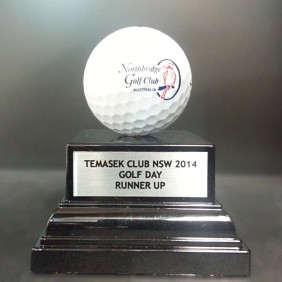 Custom Awards Gallery Mounted Golf Ball - Trophy Land