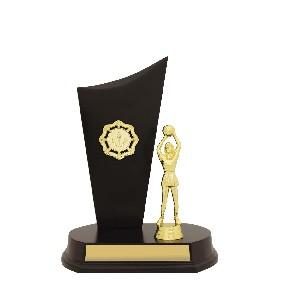 Netball Trophy N0158 - Trophy Land