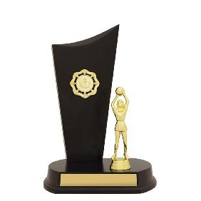 Netball Trophy N0159 - Trophy Land