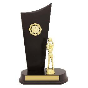 Netball Trophy N0160 - Trophy Land