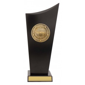 Netball Trophy N0163 - Trophy Land