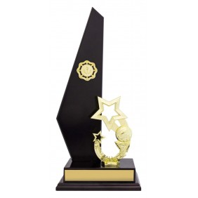 Netball Trophy N0166 - Trophy Land