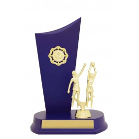Netball Trophy N0176 - Trophy Land