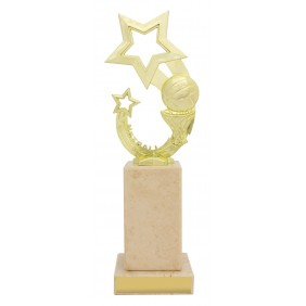 Netball Trophy N1014 - Trophy Land