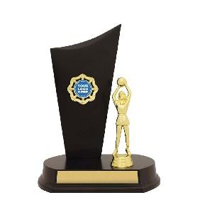 Netball Trophy N1037 - Trophy Land