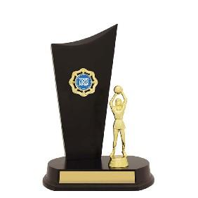 Netball Trophy N1038 - Trophy Land