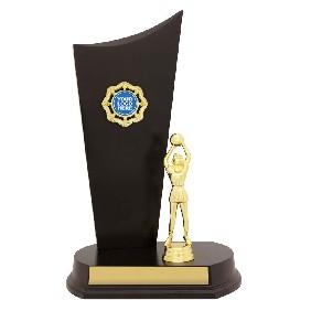 Netball Trophy N1039 - Trophy Land