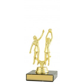 Netball Trophy N1072 - Trophy Land