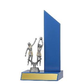 Netball Trophy N1102 - Trophy Land