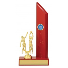 Netball Trophy N1111 - Trophy Land