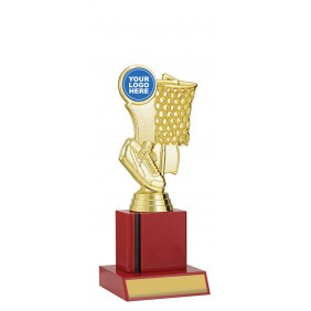 Netball Trophy N1113 - Trophy Land
