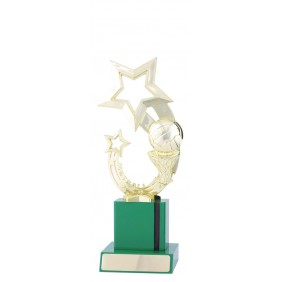 Netball Trophy N1138 - Trophy Land