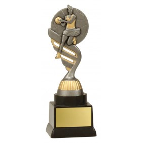 Netball Trophy N1146 - Trophy Land