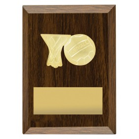 Netball Trophy N1161 - Trophy Land