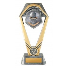 Netball Trophy N21-1708 - Trophy Land