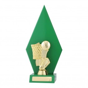 Netball Trophy N6071 - Trophy Land