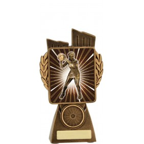 Netball Trophy N7008 - Trophy Land