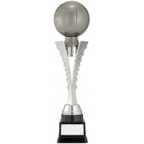 Netball Trophy N8033 - Trophy Land