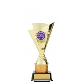 Netball Trophy N9038 - Trophy Land