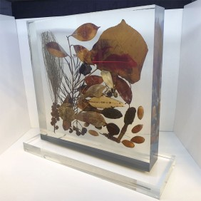 Custom Awards Gallery Nature Embedment - Trophy Land