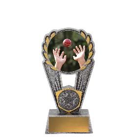 Cricket Trophy PSC404A - Trophy Land