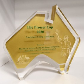 Custom Awards Gallery Prosser Cup Award - Trophy Land