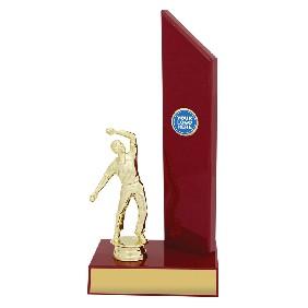 Cricket Trophy S1117 - Trophy Land