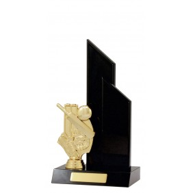 Cricket Trophy S1136 - Trophy Land
