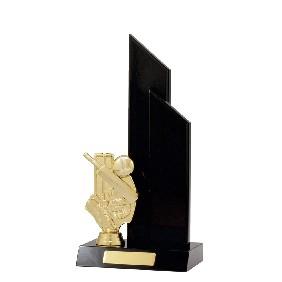 Cricket Trophy S1137 - Trophy Land