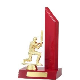 Cricket Trophy S5045 - Trophy Land