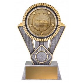 Netball Trophy SR137C - Trophy Land