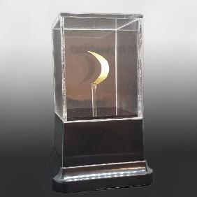 Presentation Gallery Small Custom Display Case - Trophy Land