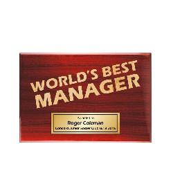 TLPLQ-Manager1