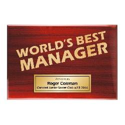 TLPLQ-Manager2