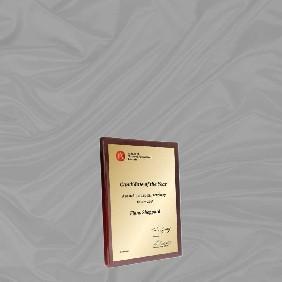 Appreciation Plaques TLPLQ5-WG1 - Trophy Land