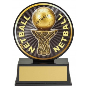 Netball Trophy VB37 - Trophy Land