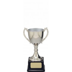 Metal Trophy Cups VT10-2 - Trophy Land